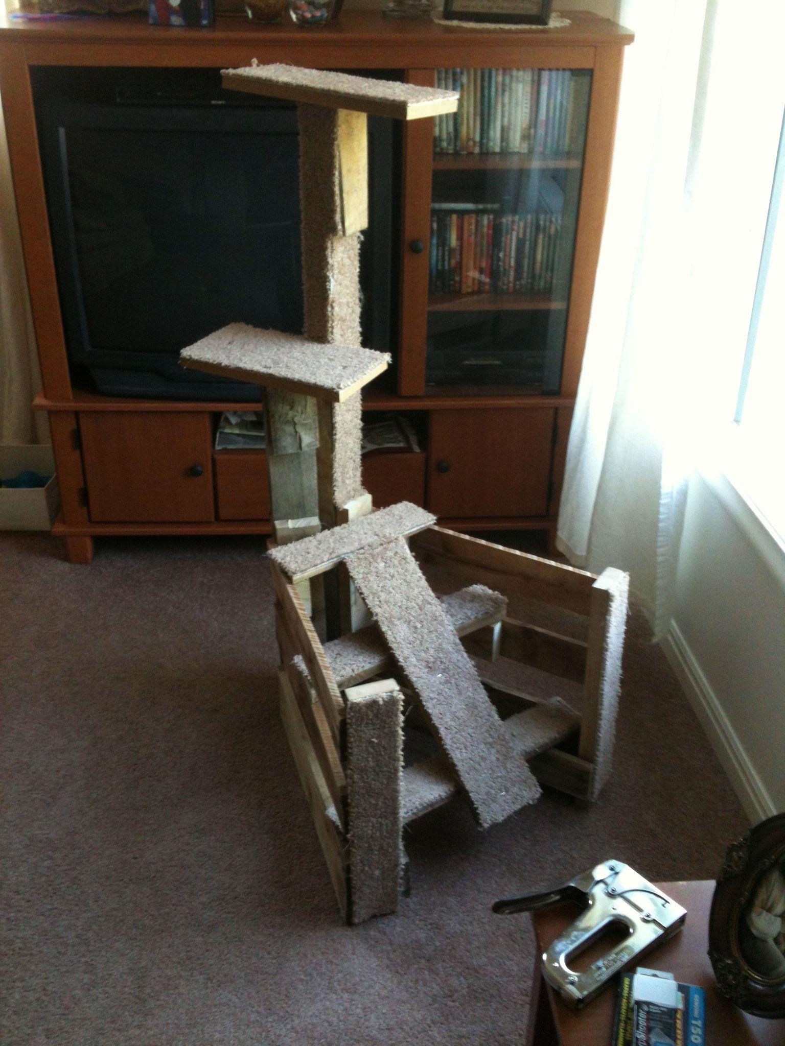 Cat Climber Home decor, Entryway tables, Decor