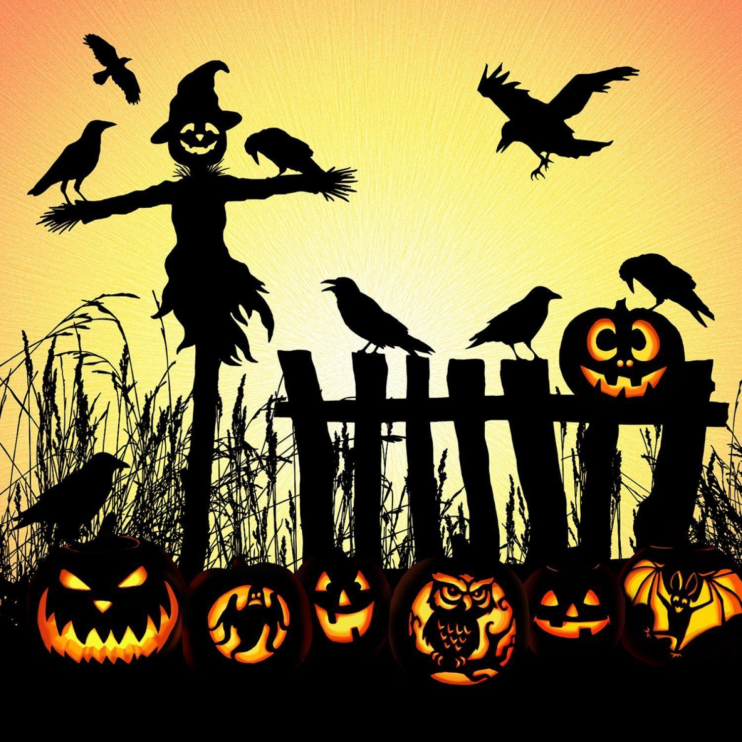 Spectrum Field Halloween 2020 Pin by barbara stavlo on Halloween in 2020 | Halloween scarecrow