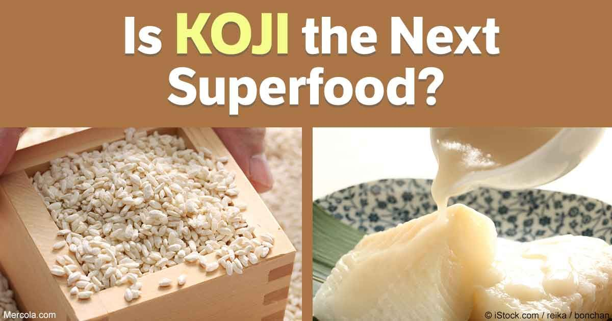 Optimizing gut health with fermented foods is a foundational step to achieve good health and koji-fermented foods is among the latest trends in fermentation