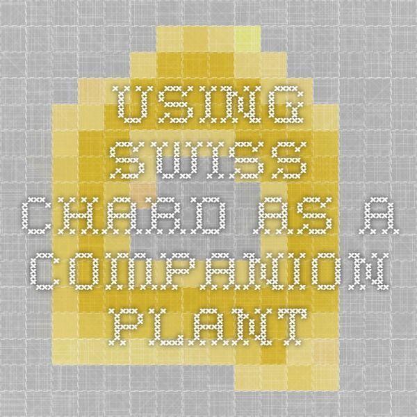 Using Swiss Chard As A Companion Plant Www Biomannafarms… 400 x 300