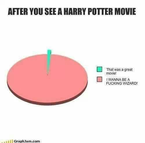 After watching any Harry Potter film