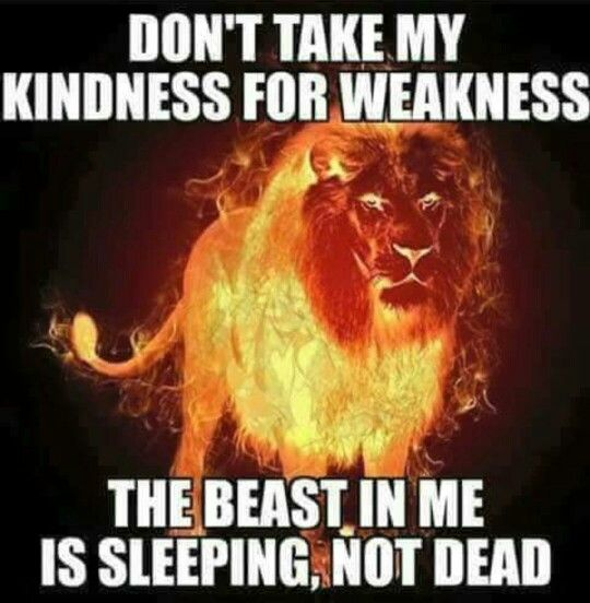 Lone Wolf Wallpaper Quote Don T Mistake My Kindness For Weakness Weakness