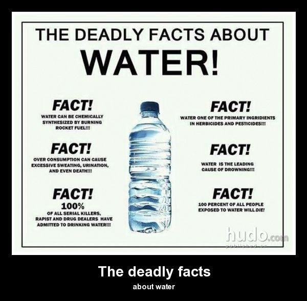 The Deadly Facts About Water Im Cackling Funny Funny Facts