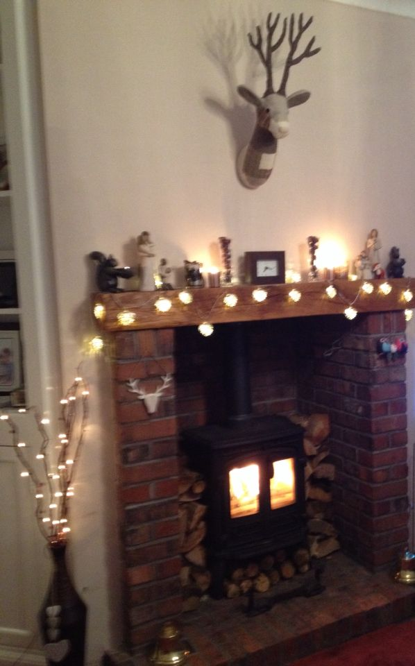 san francisco e9e32 79ace Stags head M&S Woodburner Fairy lights Fireplace | Our New ...
