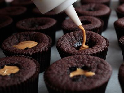 dc cupcakes cookbook