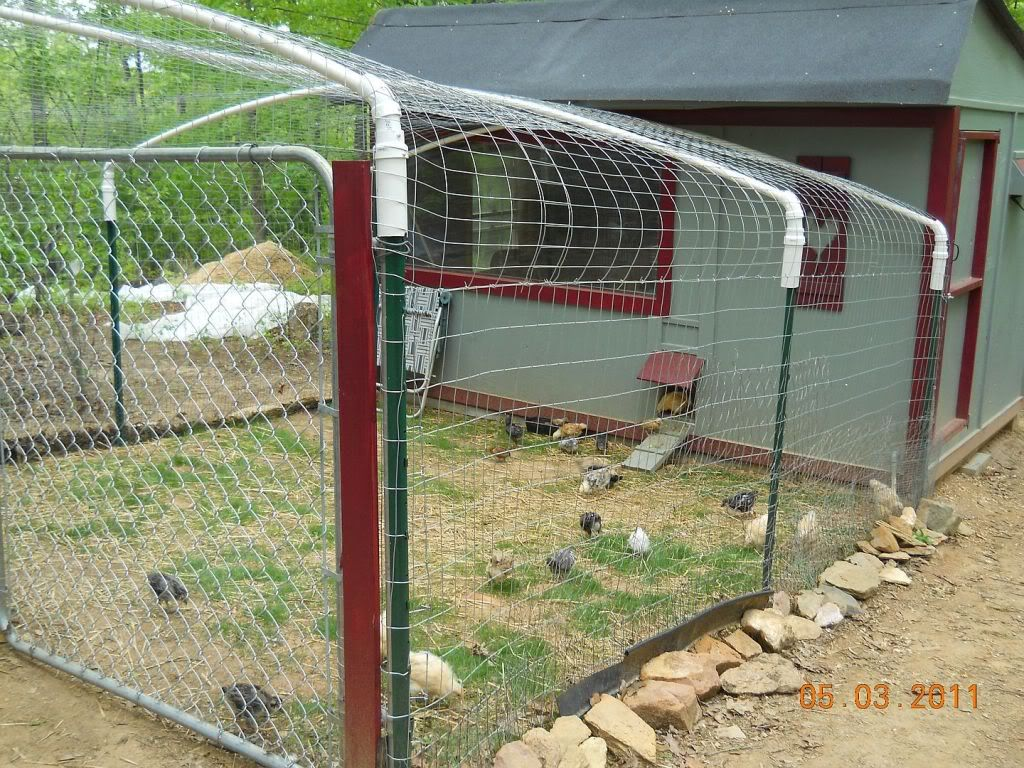 Flexible pvc bird netting as roofing pinterest coops for Chicken coop made from pvc