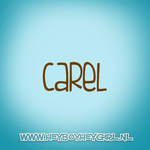 Carel (Voor meer inspiratie, en unieke geboortekaartjes kijk op www.heyboyheygirl.nl)