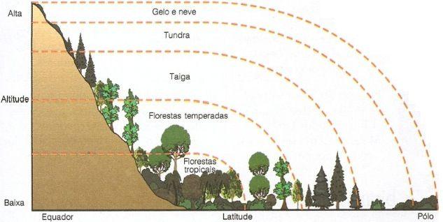 Biomas Terrestres Actividades escolares, Ecología y Biología - fresh grupos de la tabla periodica unam