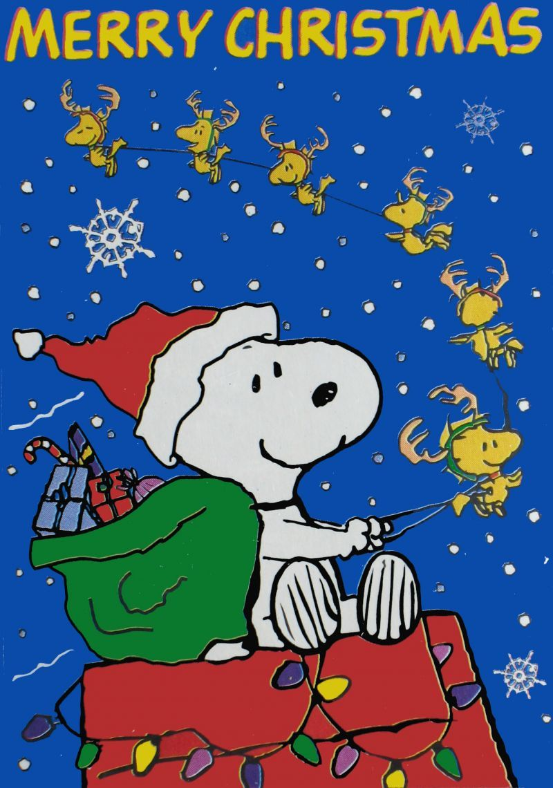 Snoopy Merry Christmas Images.Woodstock Pulling And Snoopy Driving The Sleigh Merry Christmas