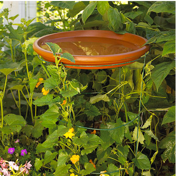 Hovering Saucer:   A large terra-cotta saucer sits atop a tomato cage serving double-duty as a birdbath and trellis for climbing vines.