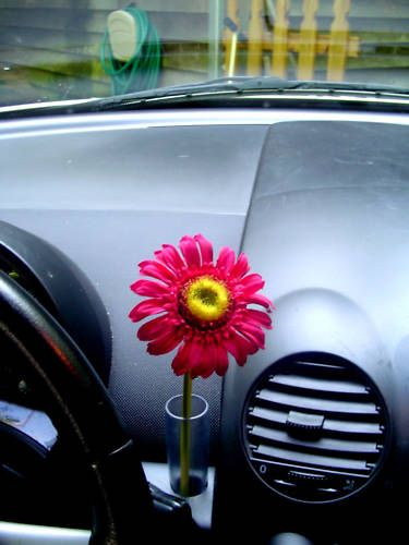 Vw New Beetle Red Silk Daisy Flower With Vw Clear Vase
