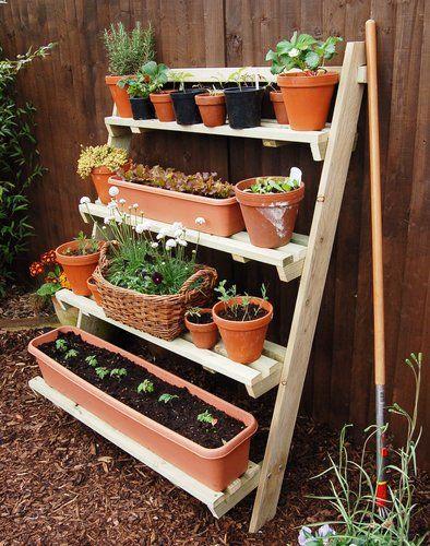 Ladder allotment #smallgardenideas