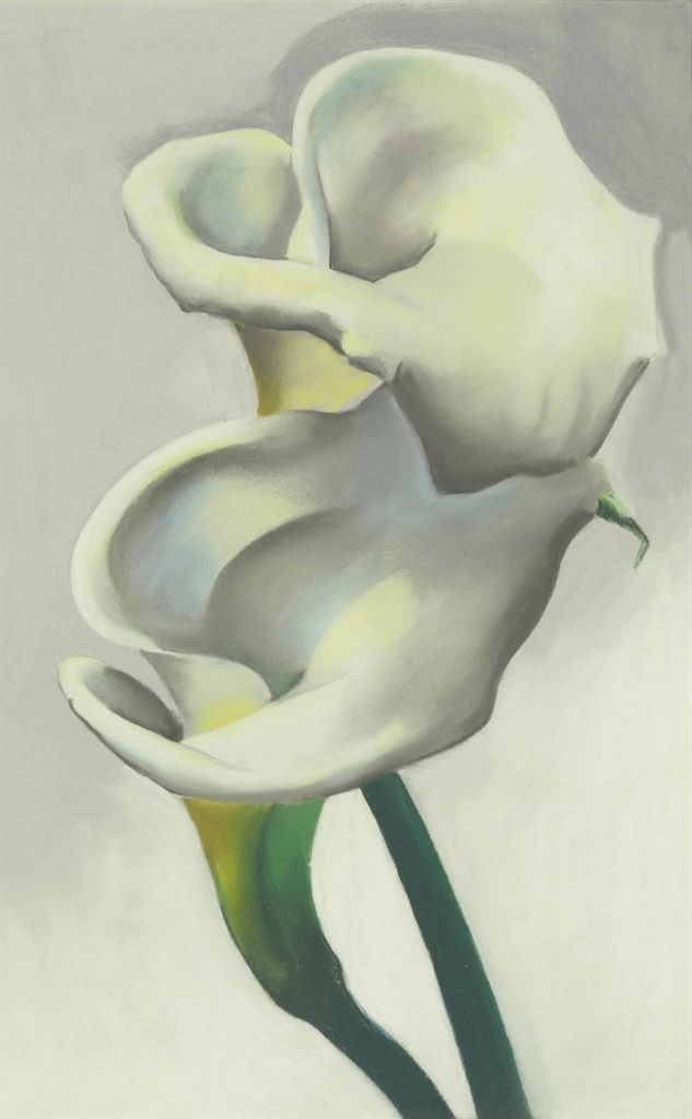 Georgia O'Keeffe (1887-1986)  Two Calla Lilies Together  signed and dated 'Georgia OKeeffe/1923-' (on the reverse)--bears artist's star device (on the backing) pastel on board  16 x 10 in. (40.6 x 25.4 cm.)