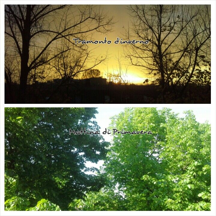 Same place, different month. Landscape from home
