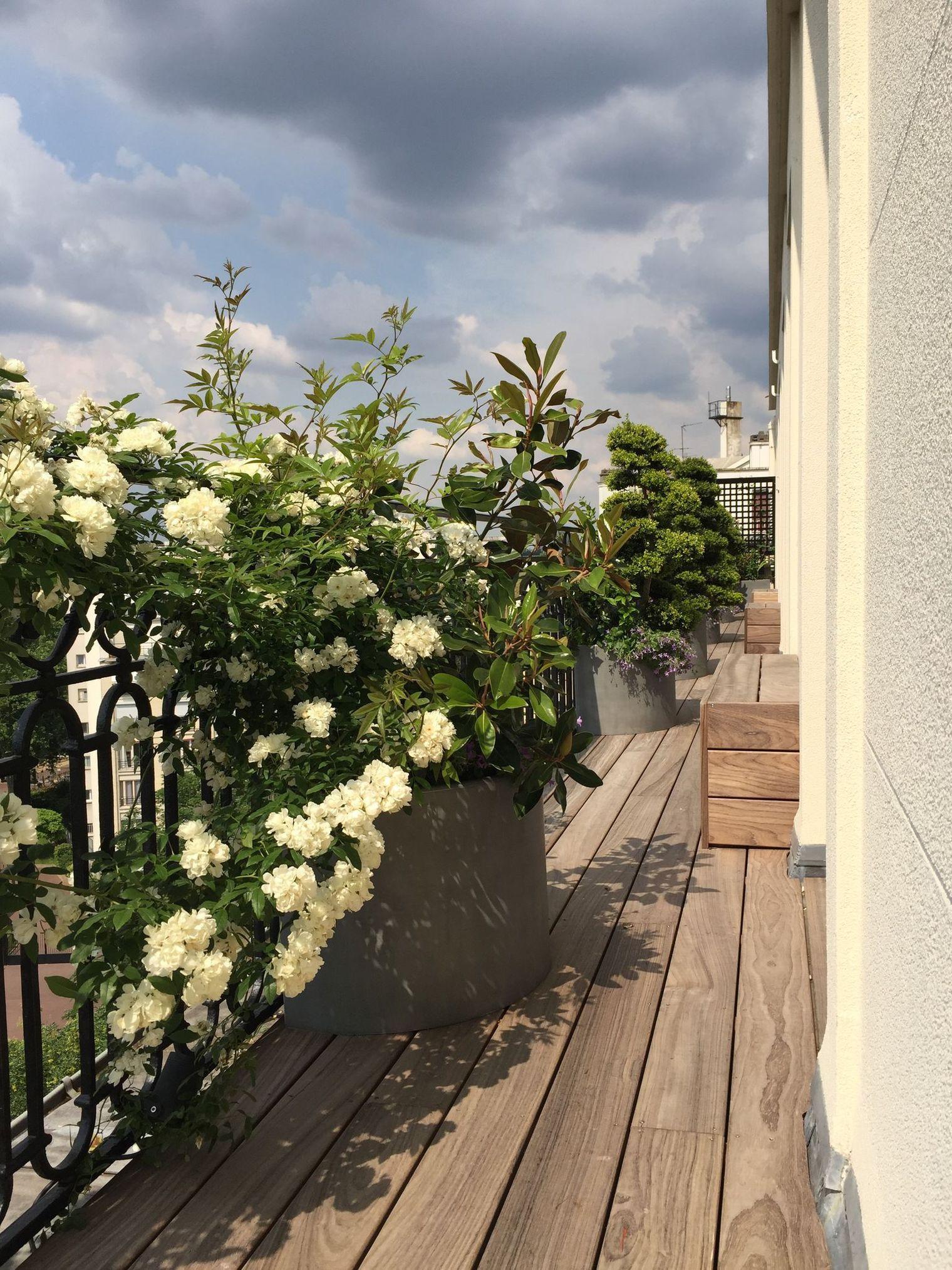 Photo of Balcon en longueur Paris : avant/après