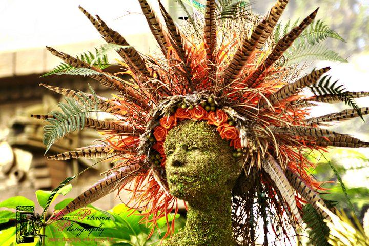 2011 Orchid Show Missouri Botanical Garden Missouri