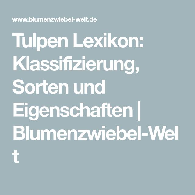 Tulpen Lexikon: Klassifizierung, Sorten Und Eigenschaften |  Blumenzwiebel Welt
