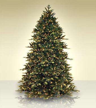 65 ft treetime deluxe geneva fir artificial christmas tree with multi lights see - 65ft Christmas Tree