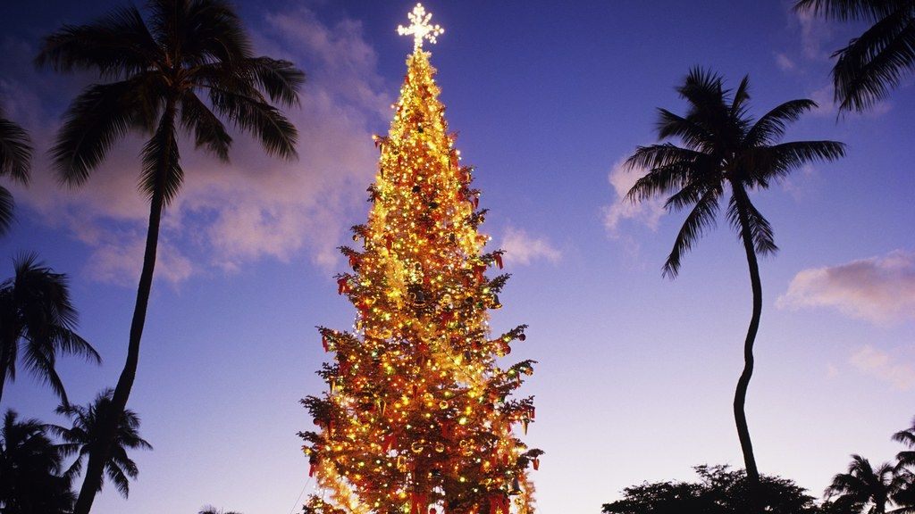 Christmas In Hawaii Images.How To Have A White Christmas In Hawaii Travel Domestic