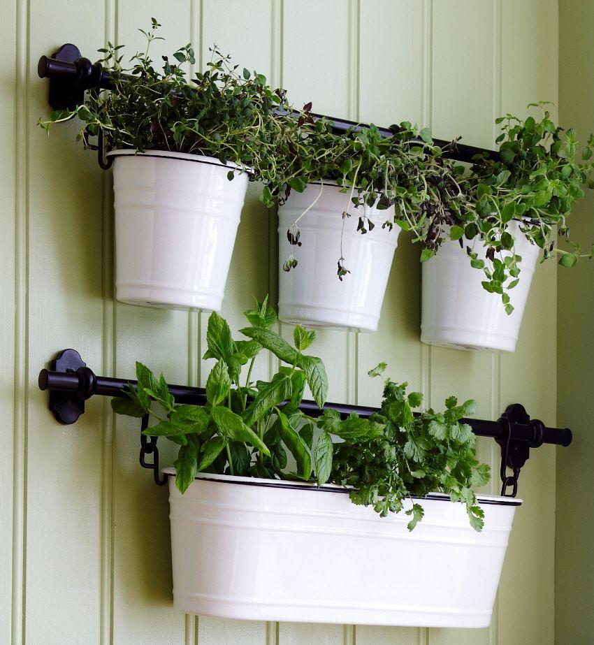 Balcony Ideas Apartment Herbs Garden