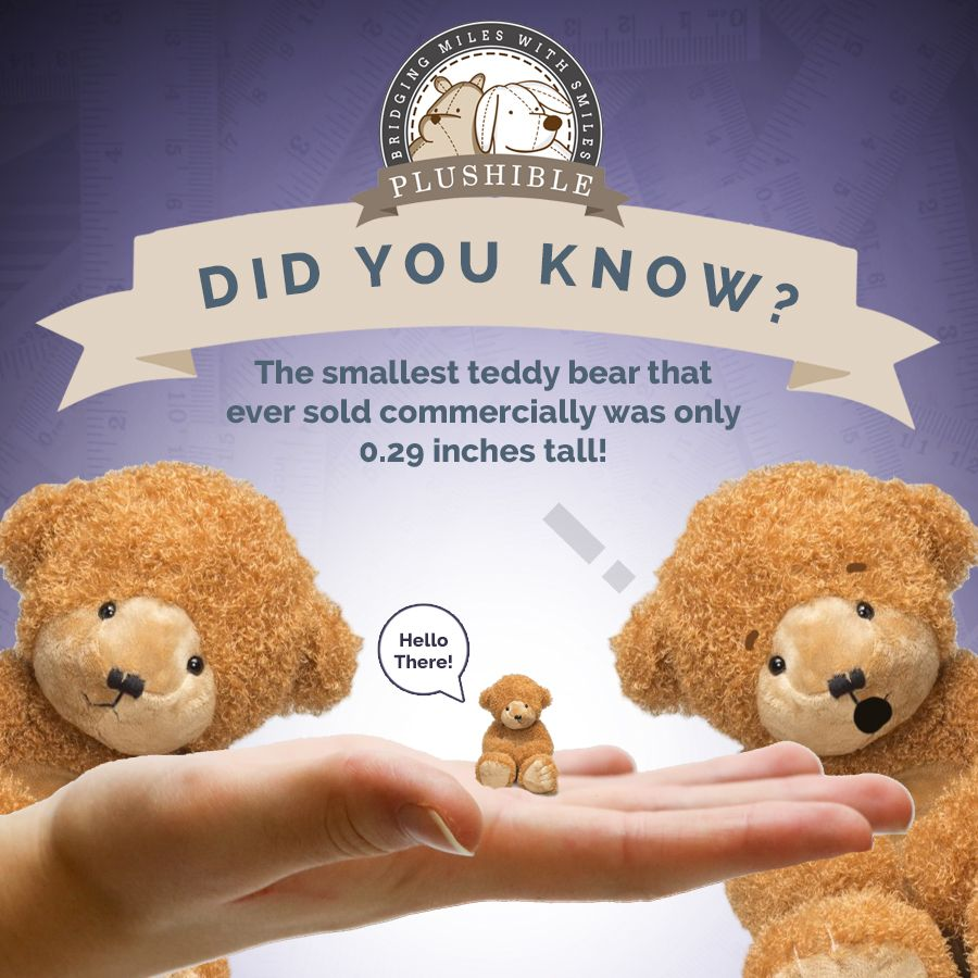 Fun Fact The Smallest Teddy Bear That Ever Sold Commercially Was Only 0 29 Inches Tall Small Teddy Bears Teddy Bear Teddy [ 900 x 900 Pixel ]