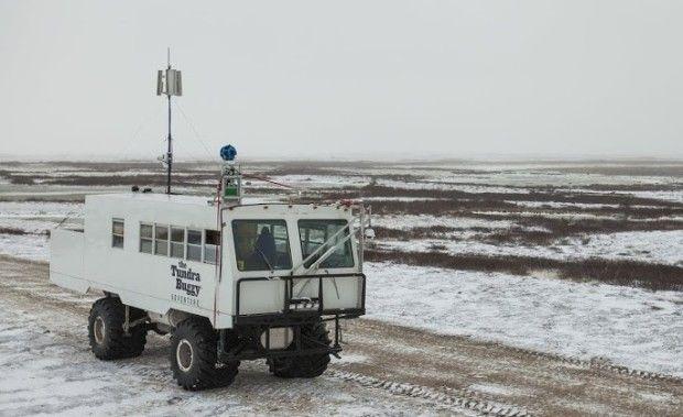 Google Takes Street View to the Polar Bear Capital of the World