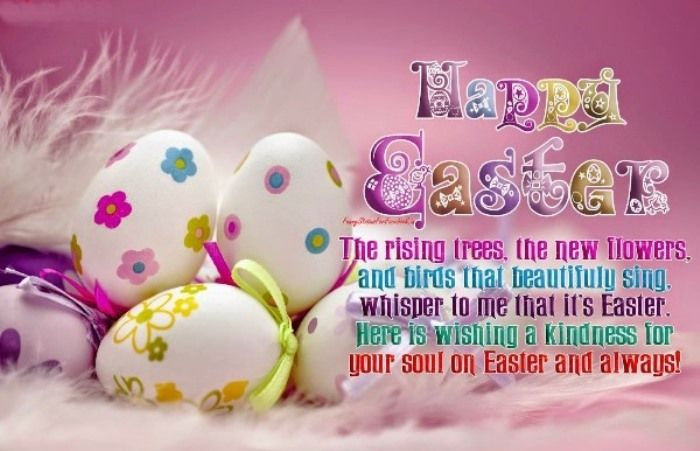 Easter Day Images Easter Bunny – Easter Card Sayings