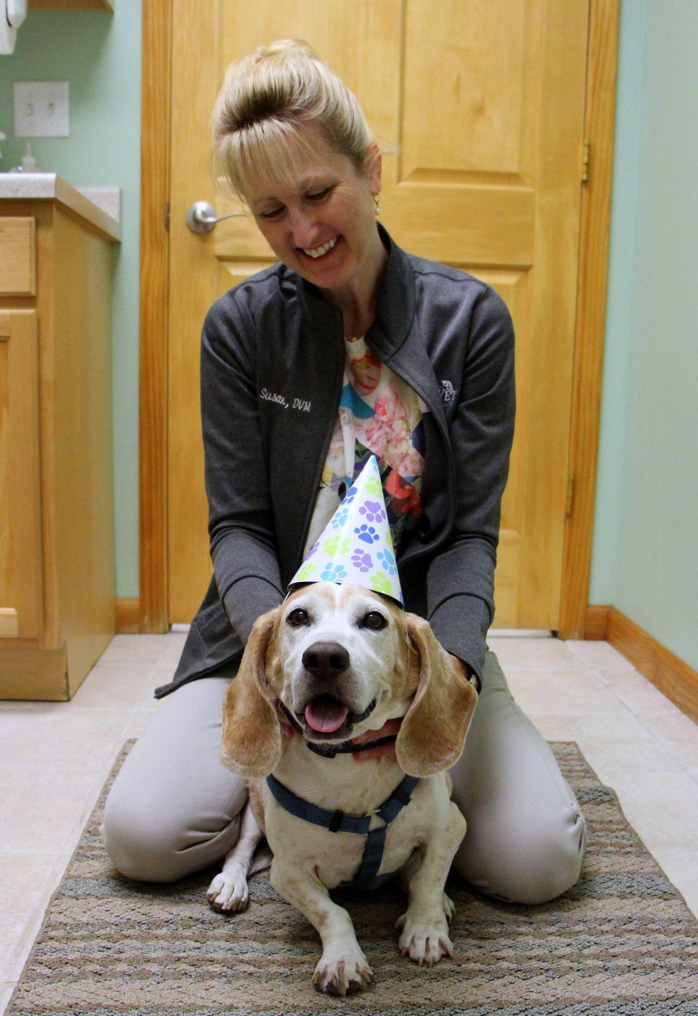 Susan Hites Dvm Sportsvet Amc Vets Pet Owners Veterinary Care