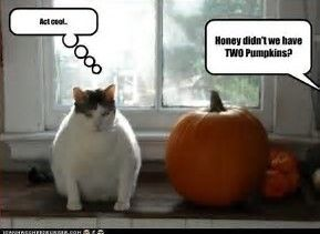 image result for funny halloween posts for facebook