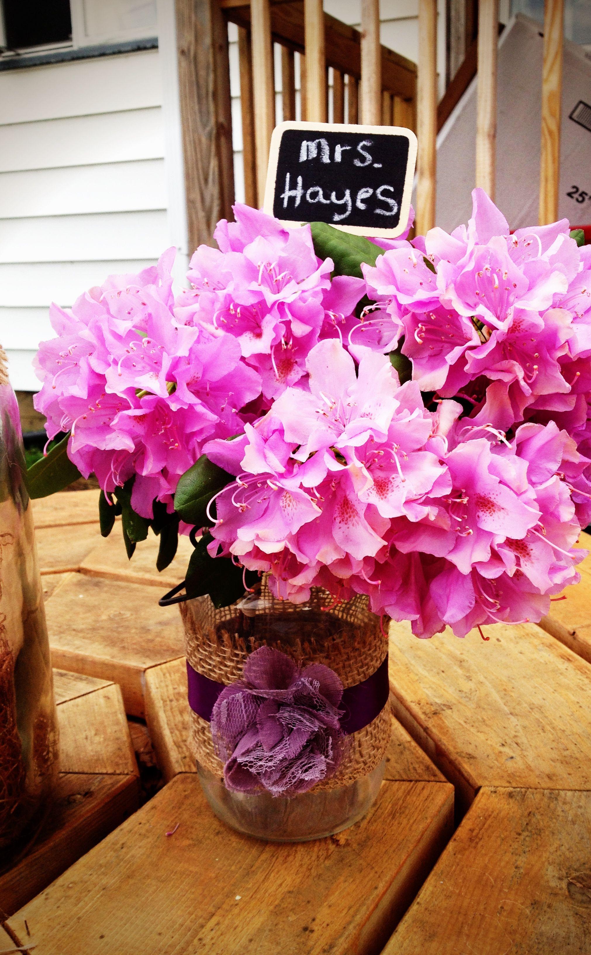 Mason jar centerpiece. Rhododendrons in bloom! | wedding | Pinterest ...
