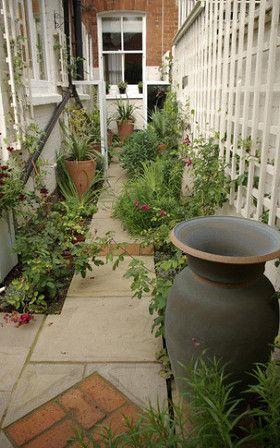 The Side Passage Just After Planting Small Garden Design Narrow Garden Side Garden