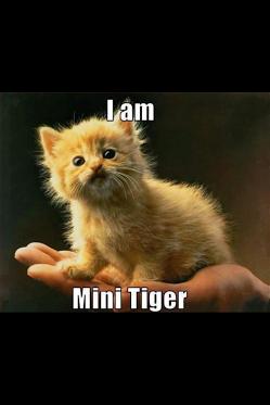 Haha! Cute!! :D