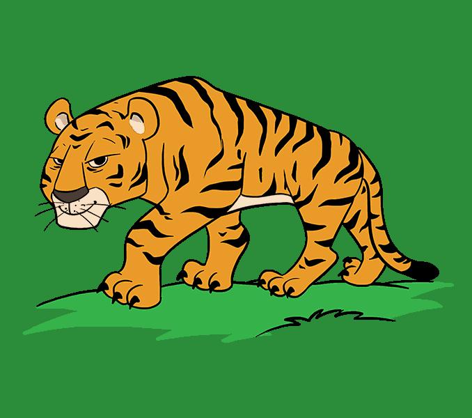 3a548f368 How to Draw a Cartoon Tiger | rock painting | Cartoon tiger, Tiger ...