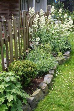 Photo of I hagen kan du se plantene vokse. I fjor har …