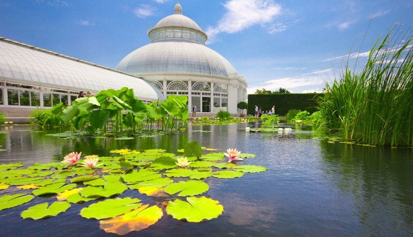 10 Botanic Gardens You Can't Miss in the U.S. | The Discoverer #botanicgarden