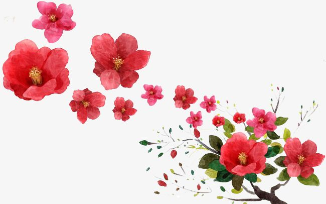 Falling Flowers Falling Flowers Red Png Transparent Clipart Image And Psd File For Free Download Fall Flowers Flowers Trendy Flowers