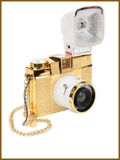Diana Lomography camera so chic