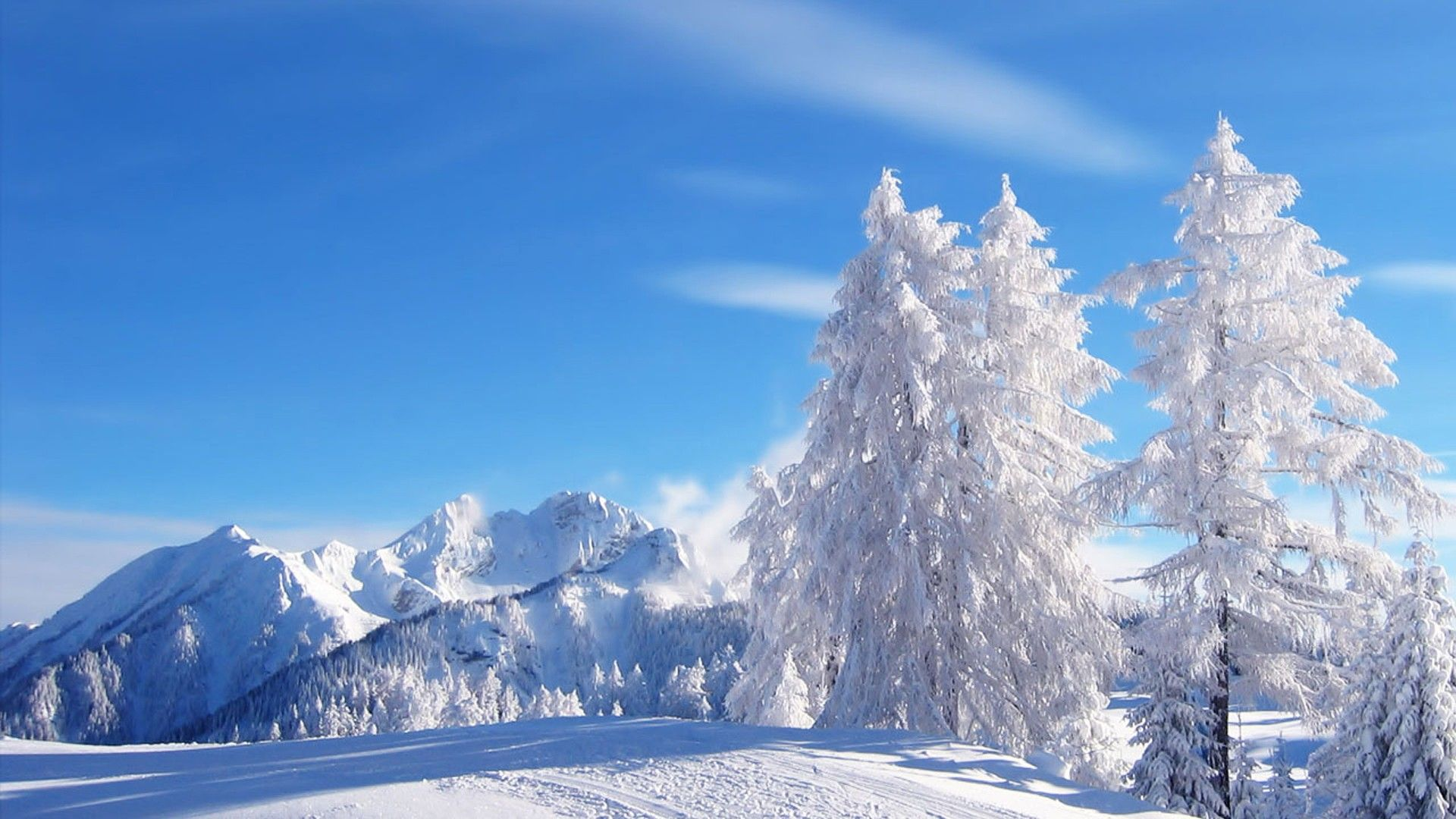Beautiful Winter Scenery Wallpaper Snowfall Beauty Of Nature In Sunlight