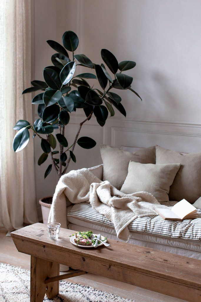 Photo of HOW TO TAKE INSPIRATION FOR INTERIOR DECOR FROM NATURE