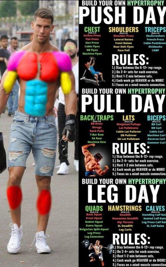 Push Pull Legs
