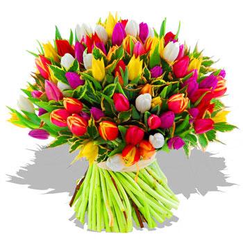 50 Arrorted Tulips Bouquet Tulipanes Flores Arreglos Florales