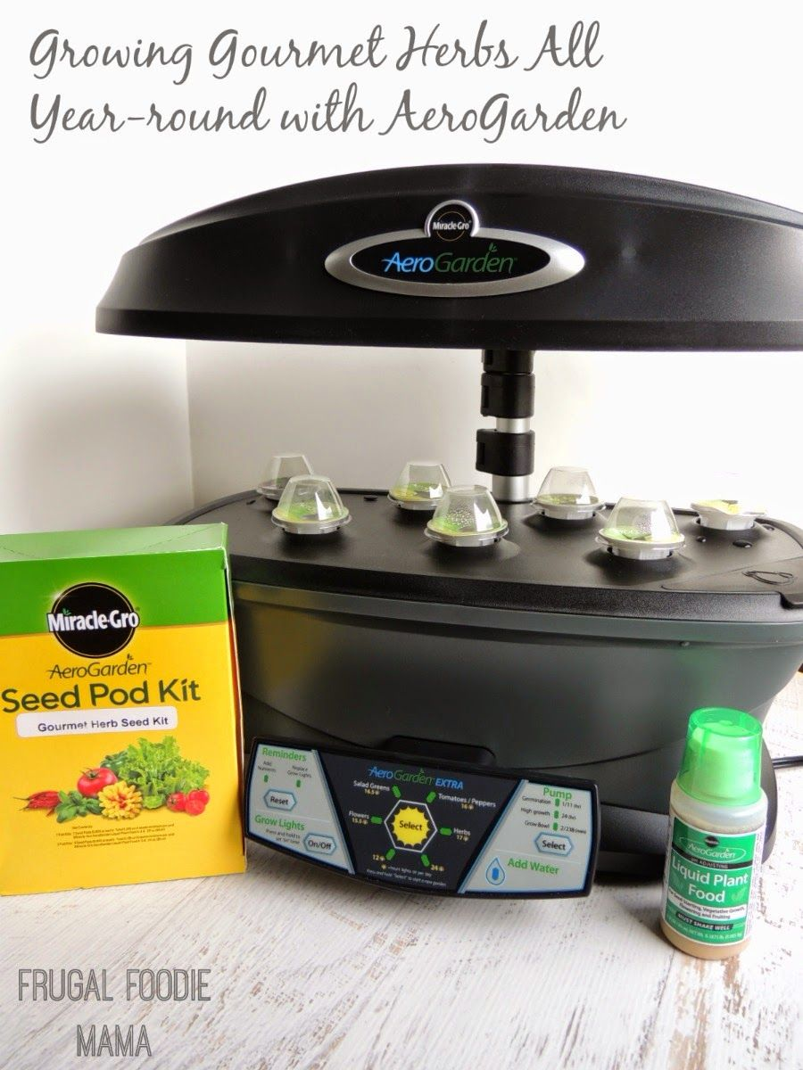 Growing Gourmet Herbs All Year Round With Aerogarden A 400 x 300