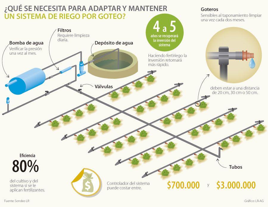 Sistema de riego por goteo buscar con google sistemas for Aspersores para riego de jardin
