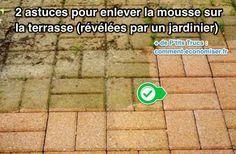 2 Astuces Pour Enlever La Mousse Sur La Terrasse Revelees Par Un Jardinier Astuces Pour Nettoyer Nettoyage Terrasse Nettoyer Terrasse