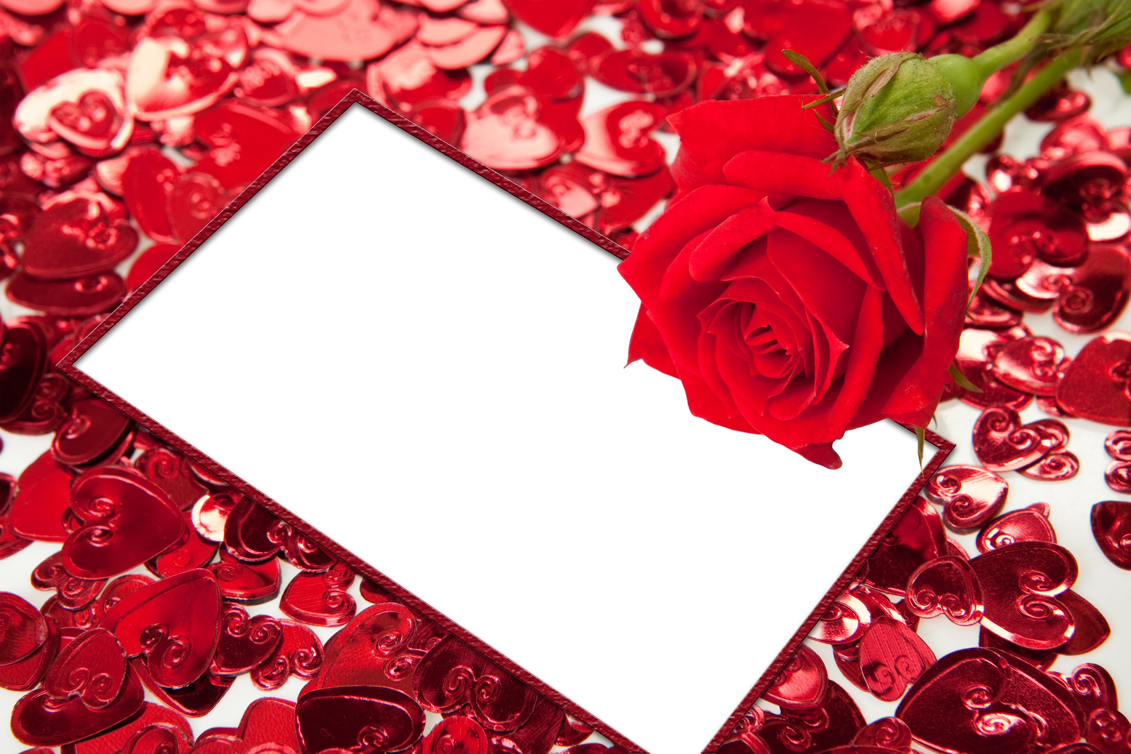 Red Roses And Hearts Transparent Png Photo Frame Flower Wallpaper Red Roses Cards