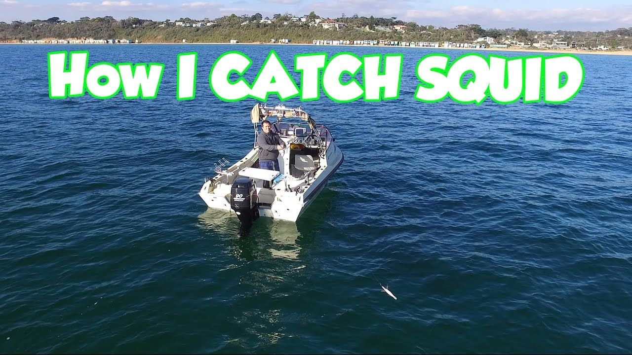 Squid Fishing How To Catch Them In a Boat Jig selection ...