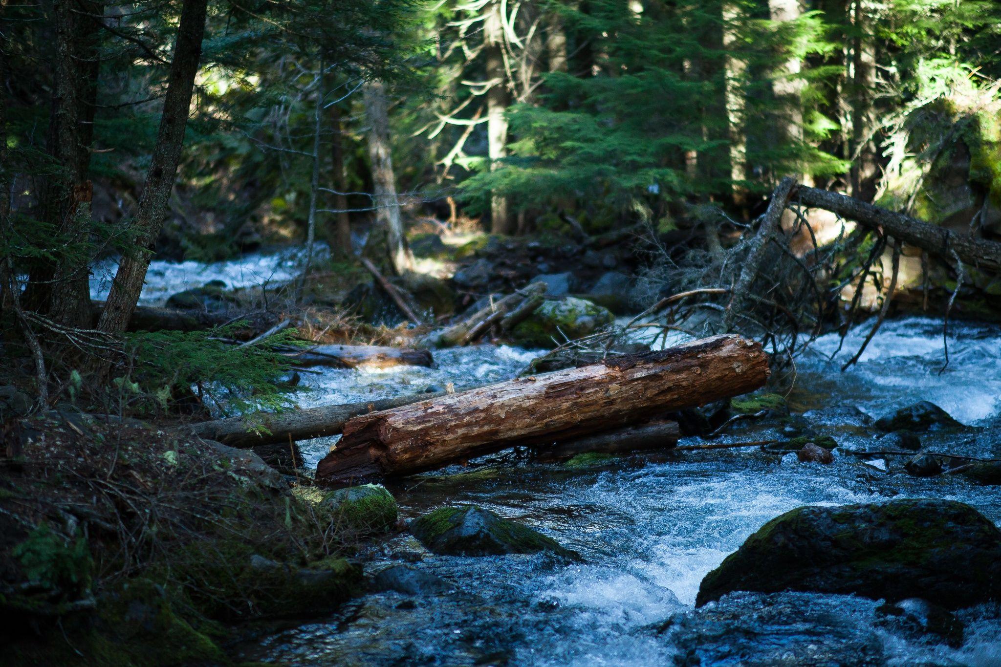 Photograph Creek by Tim Mezen on 500px