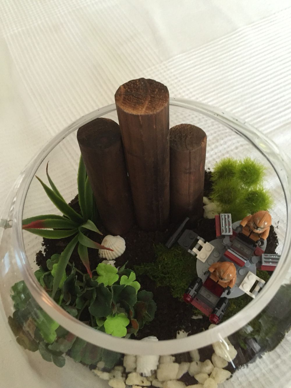 Homemade Fake Terrarium Mud Dried Moss And Fake Plants And Fencing
