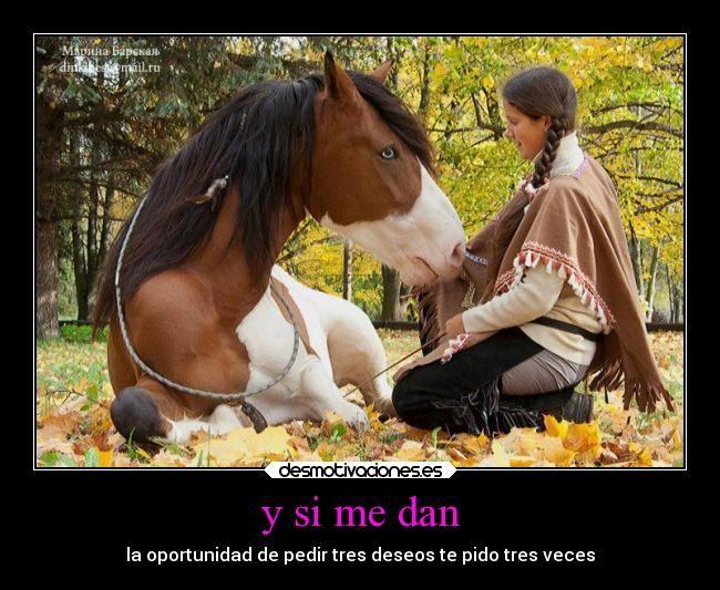 carteles deseos amistad amor caballos pasion doma natural