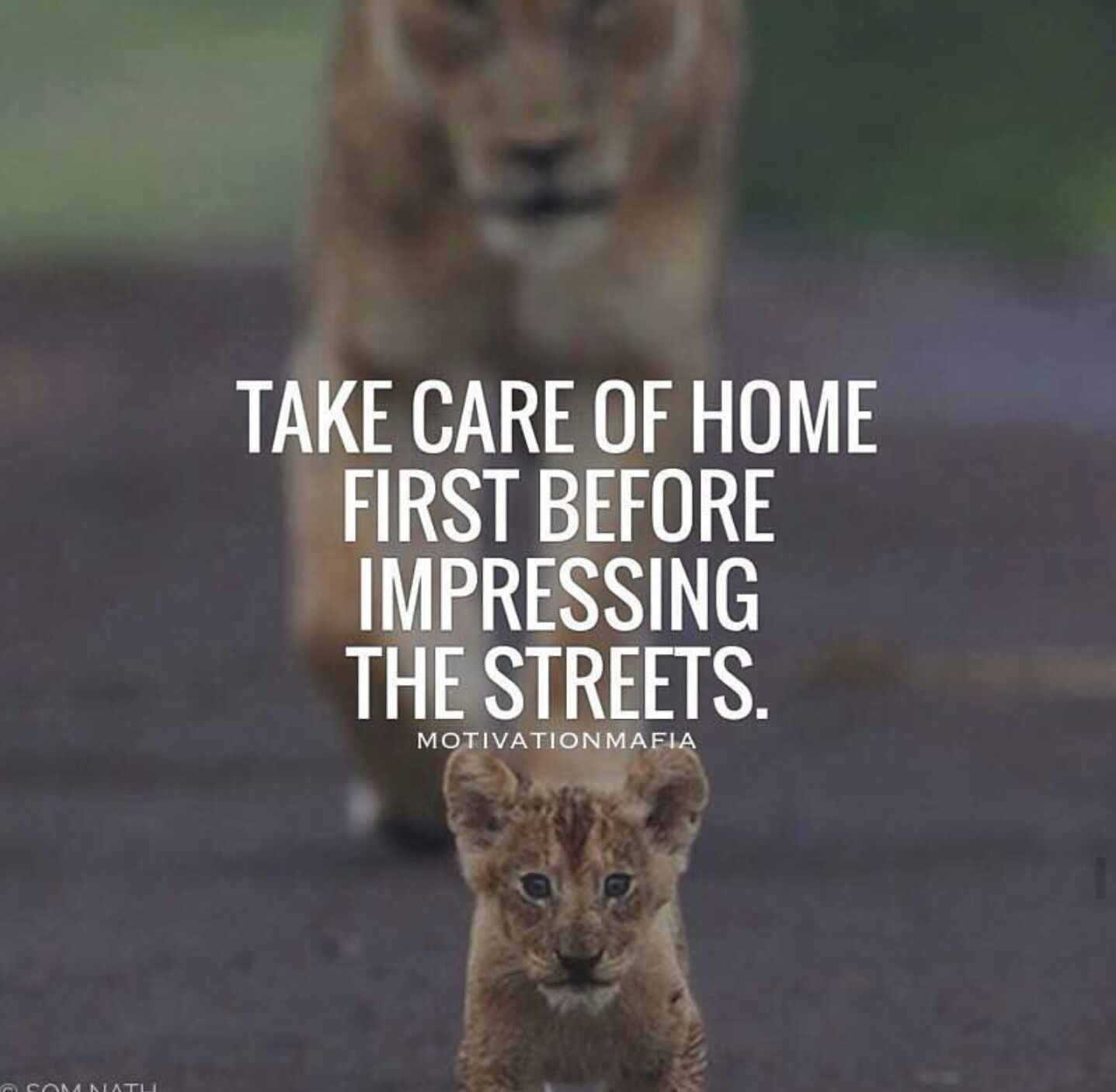 Take Care Of Home First Before Impressing The Streets Insights To